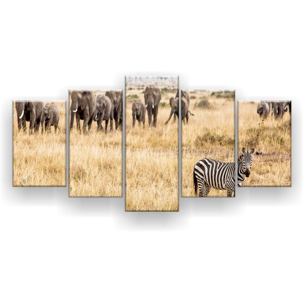 Quadro Decorativo Zebra Elefantes 129x61 5pc Sala