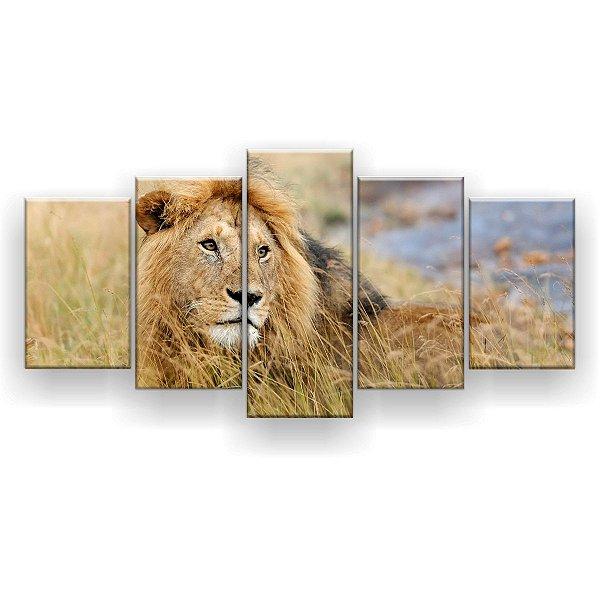 Quadro Decorativo Leão Na Planície 129x61 5pc Sala