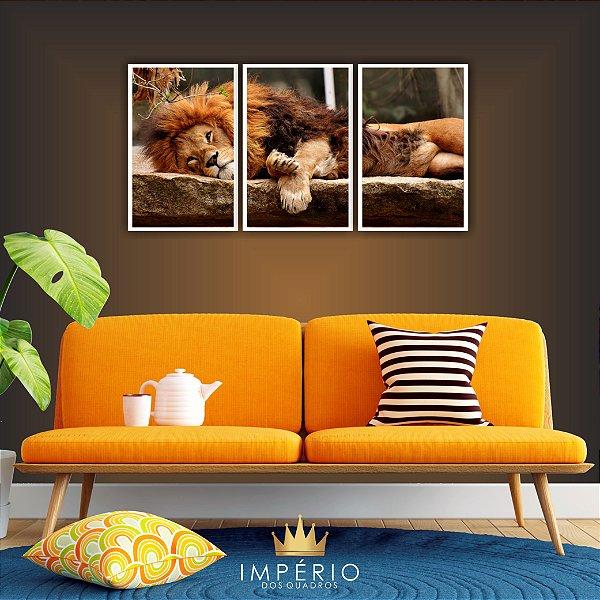Quadro Decorativo Leão Deitado 115x57 Sala Quarto
