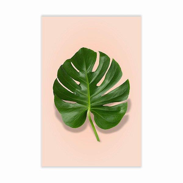 Quadro Decorativo Folha de Planta 20x30