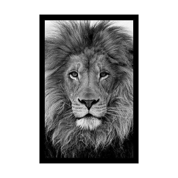 Quadro Com Moldura Leão Preto Branco 40x60
