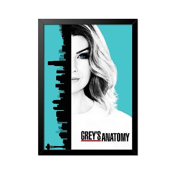 Quadro Poster Grey's Anatomy 33x23cm