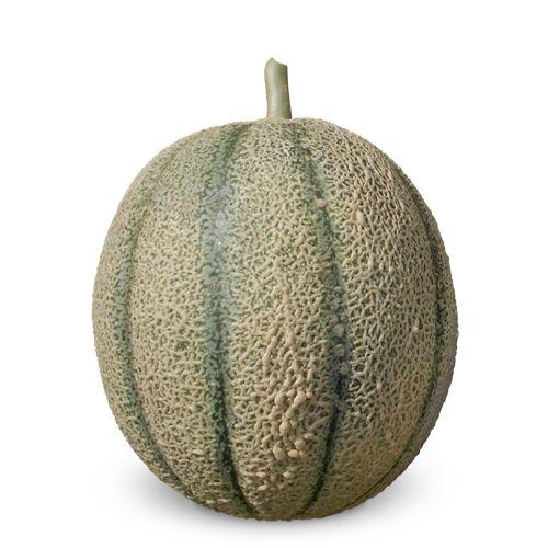 Cantaliano 0084 (12 sementes / 0,29g)