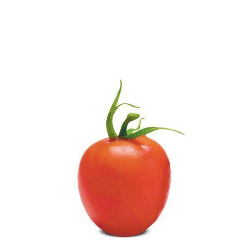 Baby Italiano (12 sementes / 0,02g)