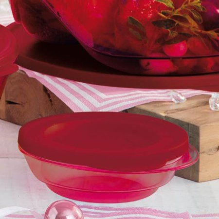Tupperware Tigela Design Policarbonato 250ml Marsala