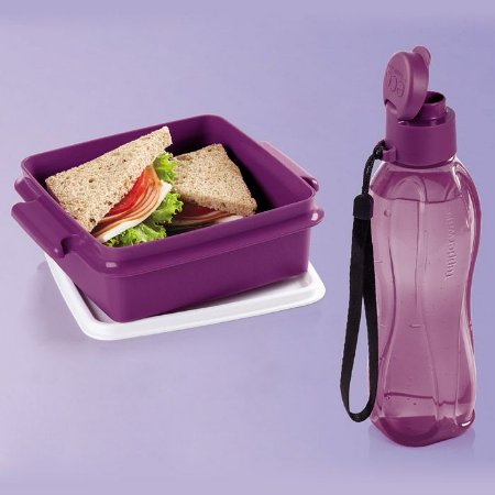 Tupperware Eco Tupper Garrafa Plus 500ml + Pote 780ml Merlot