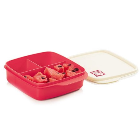 Tupperware Basic Line com Divisórias Melancia 550ml