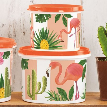 Tupperware Caixa Flamingo Kit 2 peças Laranja