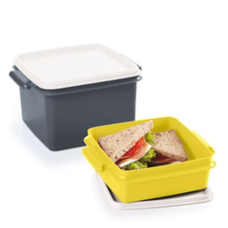Tupperware Tupper Pote 1,7 litros + Tupper Pote 780ml