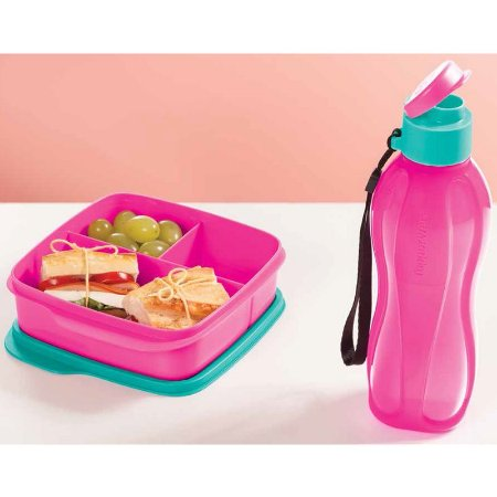 Tupperware Basic Line com Divisórias 550ml + Eco Tupper Plus 500ml