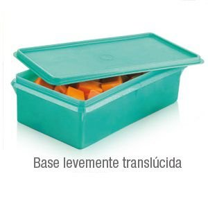Tupperware Maxi Caixa 2,5 litros