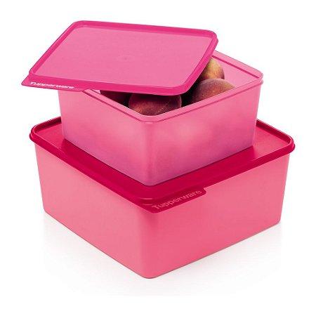 Tupperware Basic Line kit 2 Peças Rosa