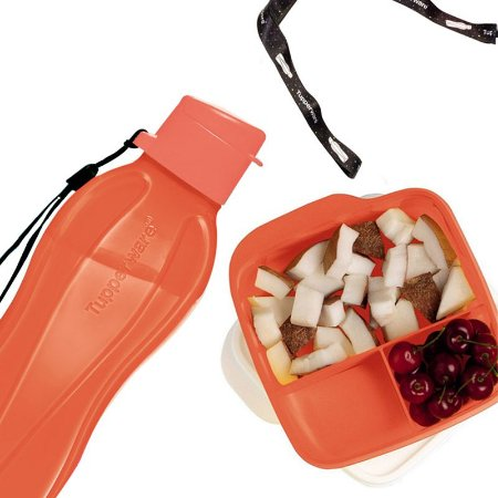 Tupperware Eco Tupper Plus 500ml + Basic Line com divisória 550ml Laranja Neon + Mega Cordão Eco