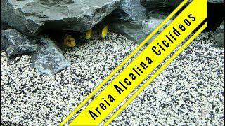 Substrato especial para aquário BW Alcali MBreda 1kg