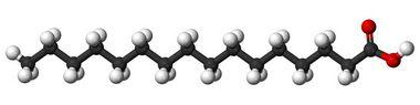 [57-10-3]Palmitic acid10GR