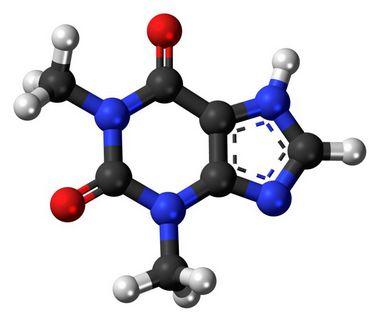 [58-55-9]Theophylline50GR