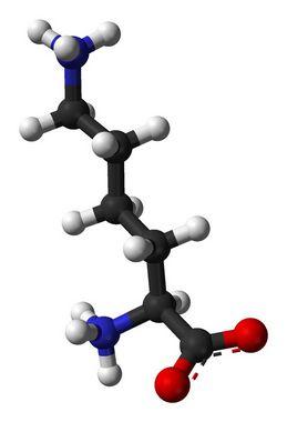 [657-27-2]Monohidrocloreto de L-Lisina