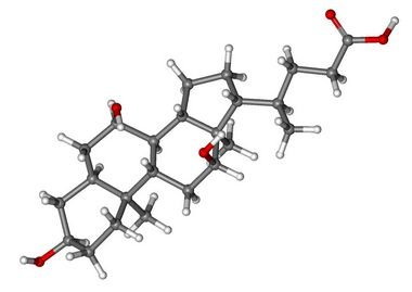 [81-25-4]Cholic acid25GR