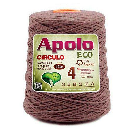 Barbante Apolo Eco 4 Fios 600g Cor 7311