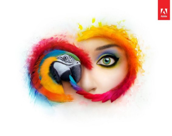 Adobe Creative Cloud para Equipes
