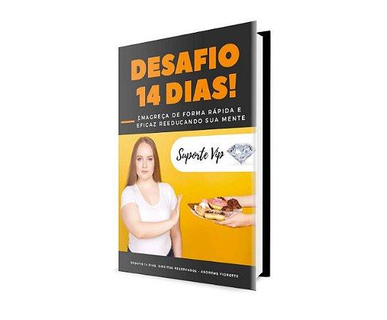 Desafio 14 Dias (e-book)
