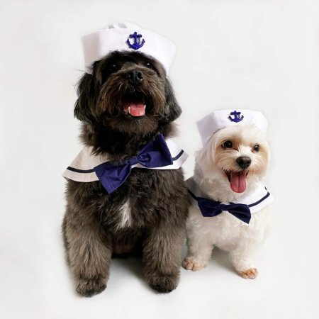 Fantasia para Cachorros e Gatos Marinheiro