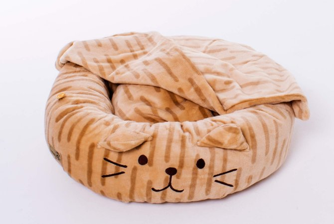 Cama Redonda para Gatos | Gatinho