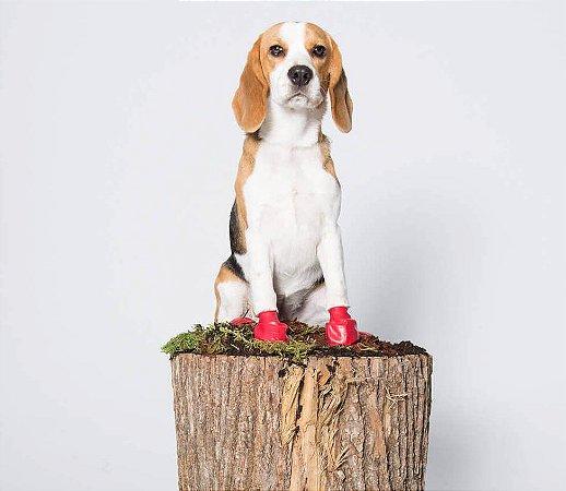 Pawz Boots Botas para Cachorros   Small   Pequeno