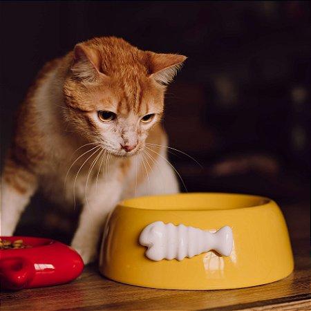 Comedouro para Gatos | Cerâmica Espinha de Peixe Amarela