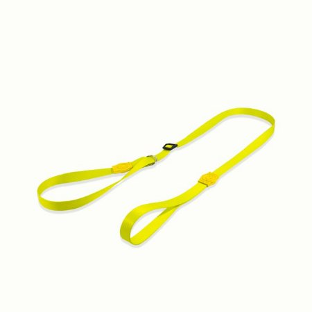 Guia Unificada para Cachorros Neon Lemon
