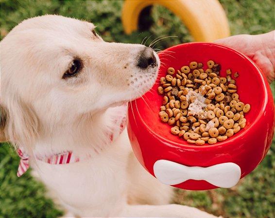 Comedouro para Cachorros | Cerâmica Vermelha com Laço