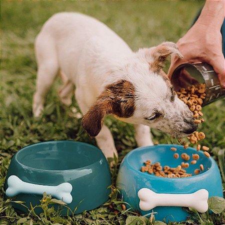 Comedouro para Cachorros   Cerâmica Turquesa com Osso