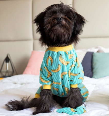 Pijama para Cachorros e Gatos   Banana