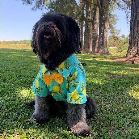 Camisa para Cachorros Limão