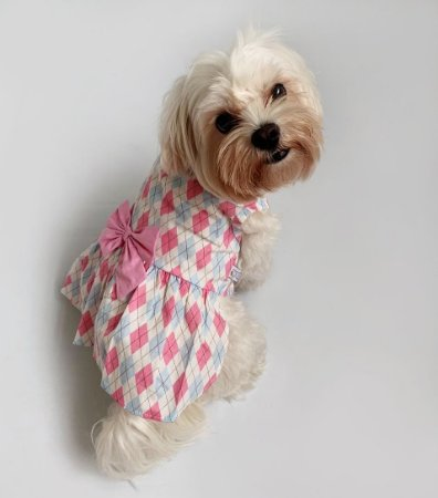 Vestido para Cachorros Xadrez Rosa e Azul