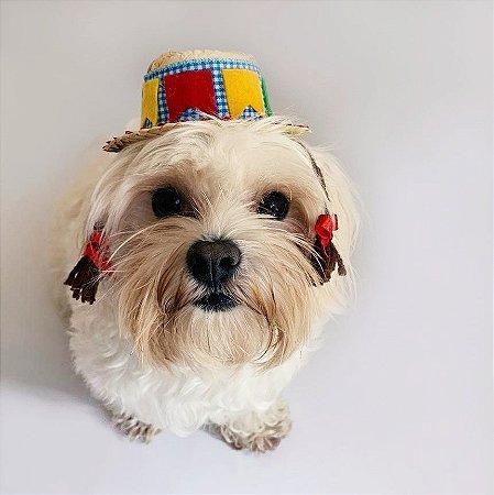 Fantasia para Cachorros e Gatos | Chapéu de Palha com Tranças | Festa Junina
