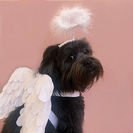 Fantasia para Cachorros e Gatos Asas e Auréola de Anjo