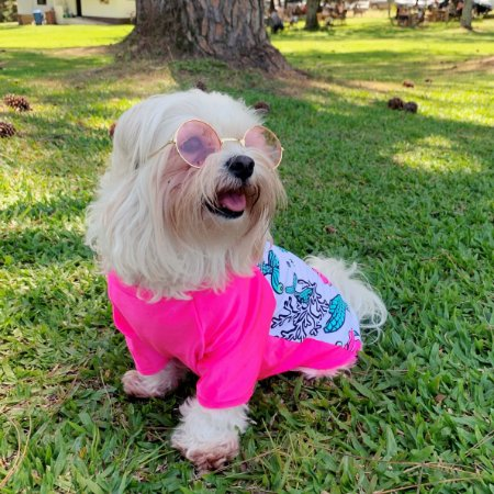 Camiseta Pet   Sereia com Proteção UV