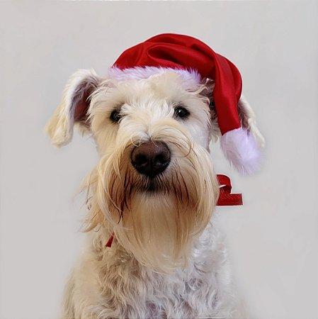 Fantasia de Natal Gorro do Papai Noel Clássico para Cachorros e Gatos