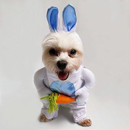 Fantasia Coelhinho da Páscoa Azul para Cachorros