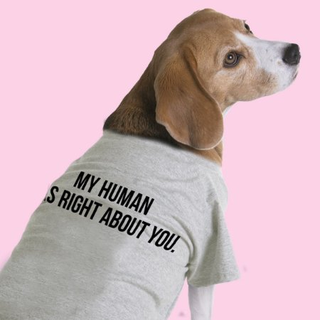 Camiseta para Cachorros - My Human Was Right About You