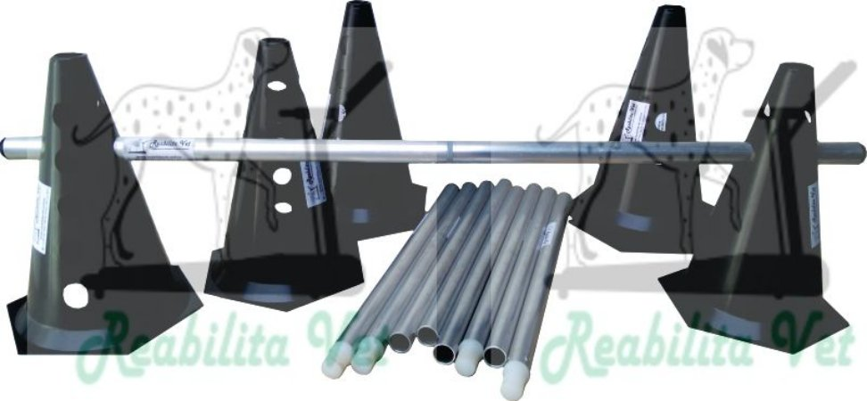 Kit Mini Cone Preto com Bastão