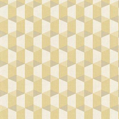 Papel de Parede Geométrico 3D