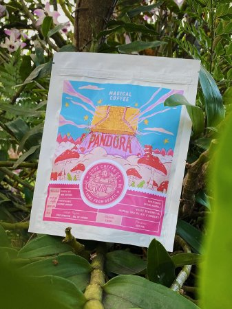 Café Magical Coffee Pandora (Catuaí Amarelo CD)
