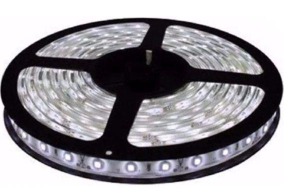 Fita LED - 3528 Branco Frio (6000k) - Rolo com 5 Metros - 4,8w  - 60 LEDs por Metro - IP65 (com Silicone) - 12V
