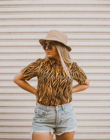 Camisa Vestido Zebra Princess