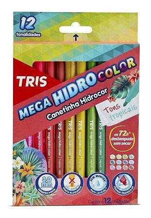 Canetinha Hidrocor - Mega HidroColor - 12 Cores - Tons Tropicais - Tris