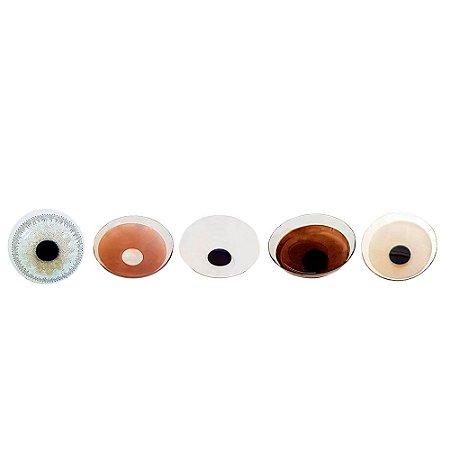 Optycolor Estética