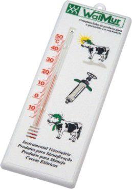 TERMOMETRO AMBIENTE 10 A +50GRAUS WALMU