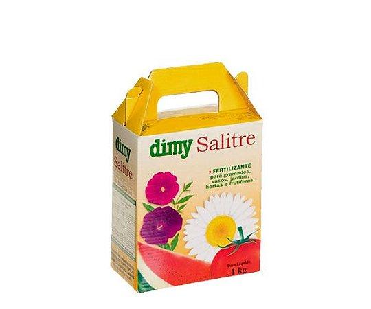 DIMY SALITRE DO CHILE C/00.50KG